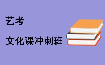 瑞友教育艺考文化课冲刺课程
