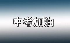 瑞友教育天津靠谱的中考培训机构
